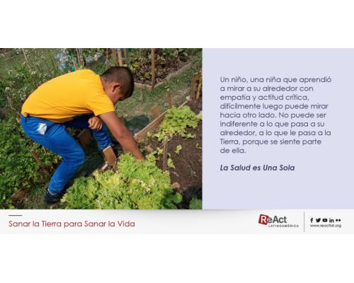 Huerta Escolar y Mundo Microbiano: Alimentación Saludable